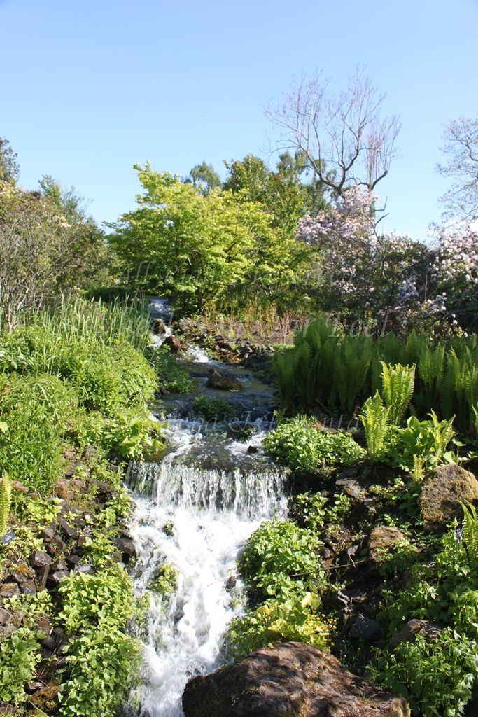 royal botanical gardens in edinburgh 12 wheels on our feet