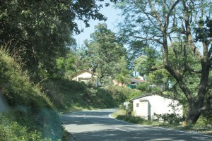 The 2nd Halt in Uttarakhand Road-trip -- Abbott Mount: Drive from Jeolikote to Abbott Mount