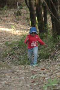 SStay at the Grand Oak Manor in Binsar, Uttarakhand