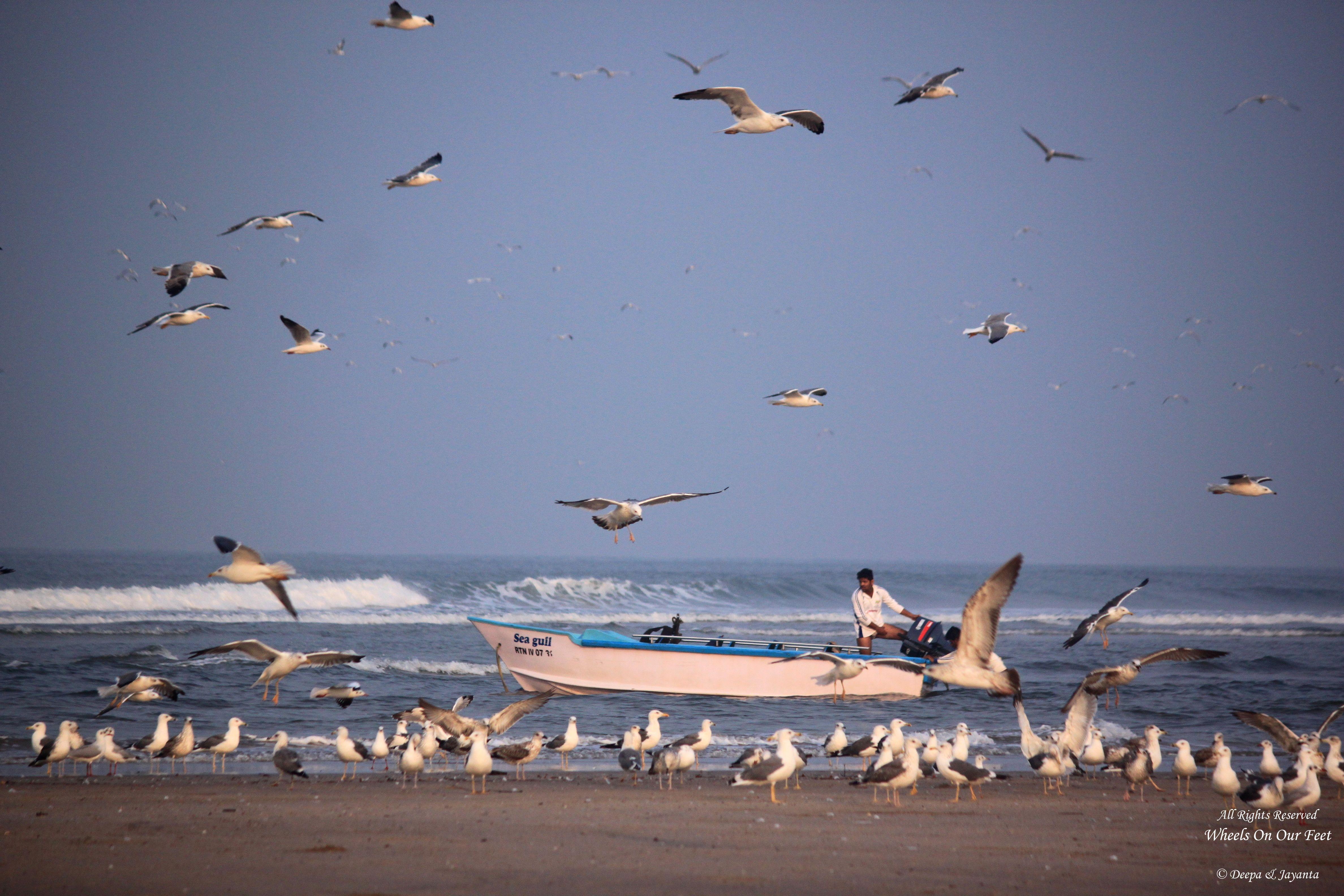 Ganapatiphule Beach