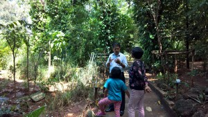 Spice Garden Tour in Sri Lanka