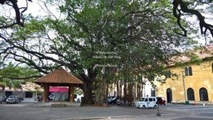 Galle Fort Tour (98)