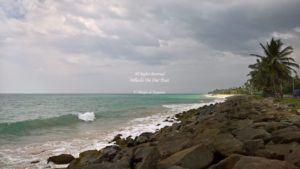 Galle to Colombo drive (15)