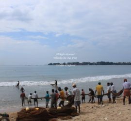 Markets & Fishing in Galle, Sri Lanka