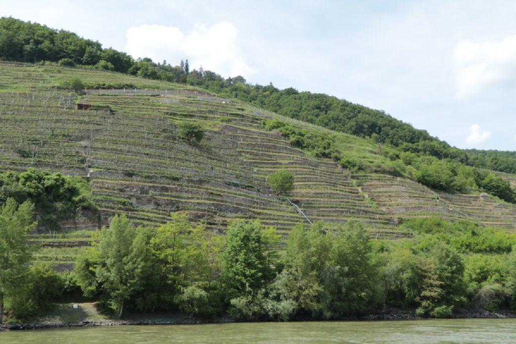 Danube River Cruise, Austria
