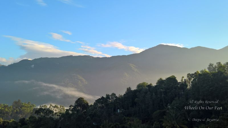 Hotel Review -- The Fog in Munnar, Kerala