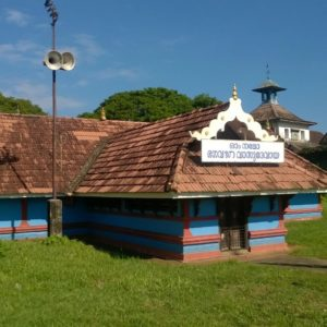 Sight-seeing in Kochi, Kerala