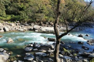 Drive from Kausani to Pokhari