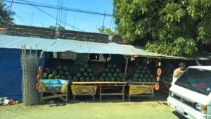 Day Trip from Manilla to Taal Lake