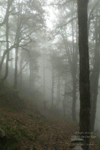 Jhalori Pass Trek